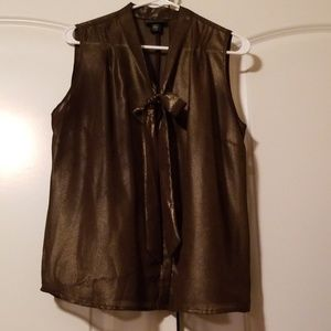 Bronze Sleeveless Blouse